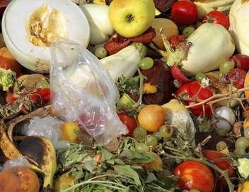 Arte Regards Ils s'engagent contre le gaspillage alimentaire
