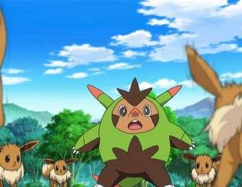 Pokémon : XY&Z Une ligue d'exception !