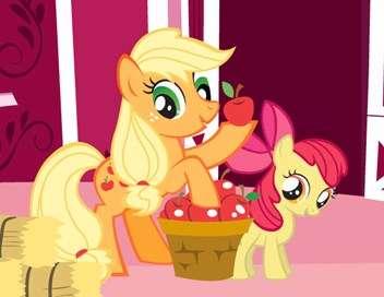 My Little Pony : les amies c'est magique Un animal pour Rainbow Dash