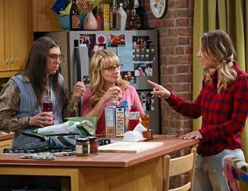 The Big Bang Theory La simulation du cerveau qui démange