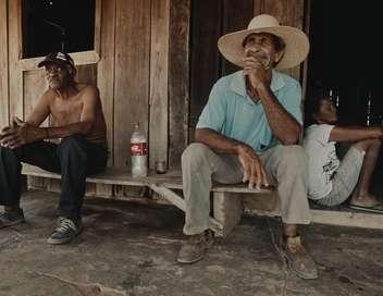 Une histoire amazonienne