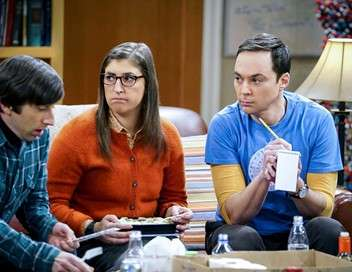 The Big Bang Theory L'indicateur matrimonial