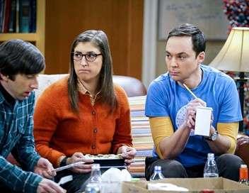 The Big Bang Theory L'indicateur matrimonial